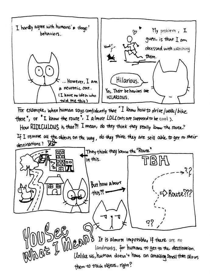 Neuro+the+Neurotic+Cat