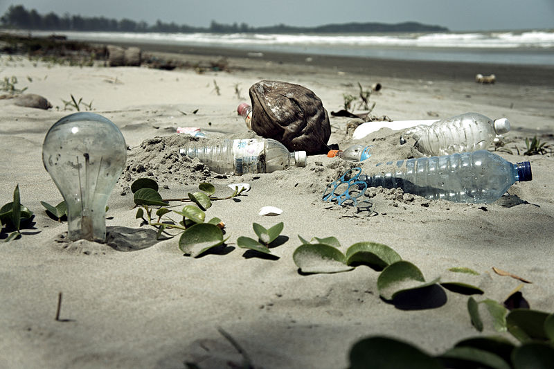 800px-Water_Pollution_with_Trash_Disposal_of_Waste_at_the_Garbage_Beach - Copy