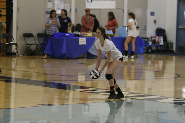 Junior Lily Krongold prepares to serve the ball. (C Vang)