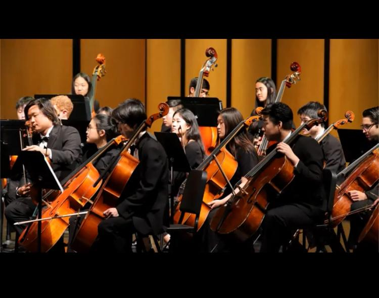 The cello section, led by junior Sedong Hwang, during the performance (Courtesy of Neel Choudhary)