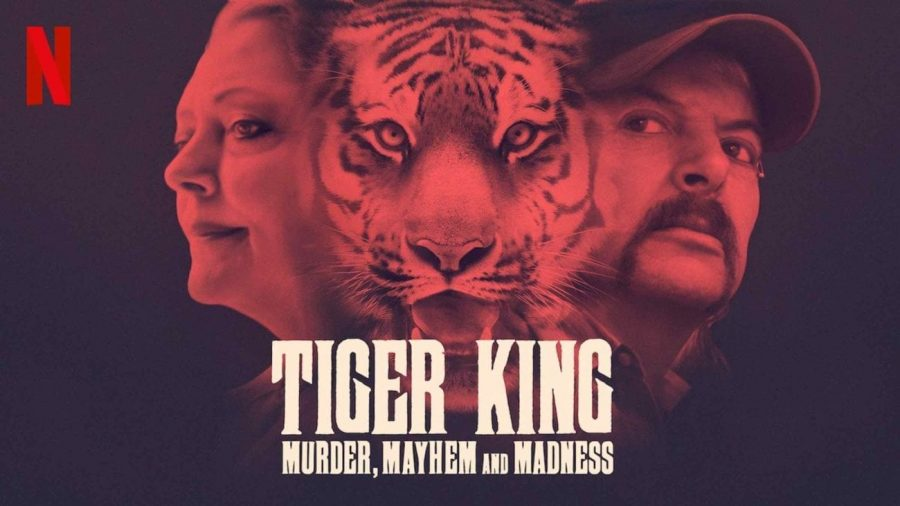 Tiger King is one of many documentaries available to watch at home on Netflix, YouTube, Hulu, and other streaming sites (Netflix).