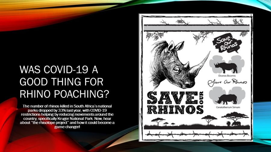 Beginning Journalism Project -Was COVID-19 A Good Thing For Rhino Poaching?